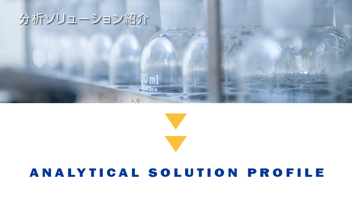 ANALYTICAL SOLUTION PROFILE