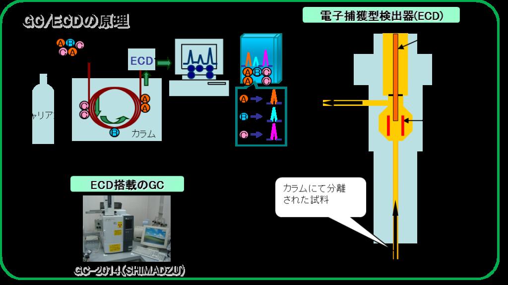 GC-ECDnogenri